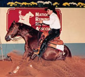 Synergy-Compete-Equine-Nutrition-04